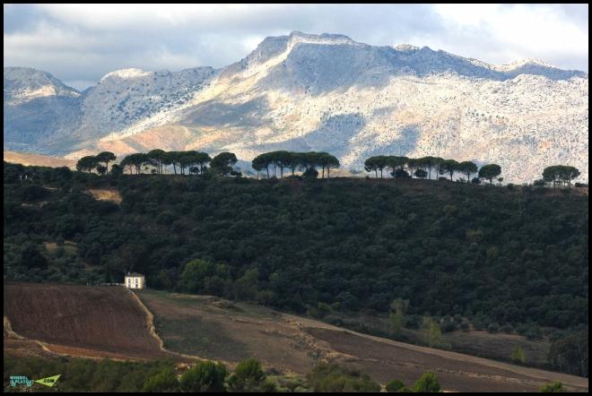 Горы Андалусии.