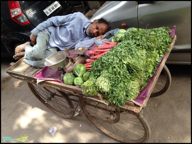 delhi india7